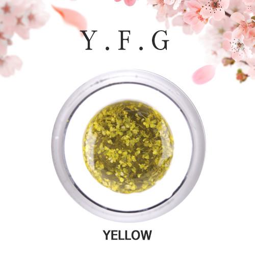 (1+1)[와이에프지] 플라워젤 Yellow 5g